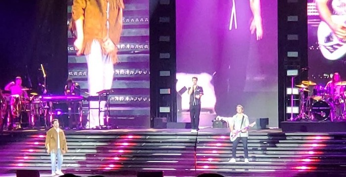 The Jonas Brothers Remember This Tour Camden Review - 90 minutes of fun